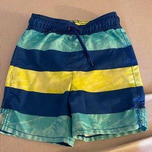 Toddler boy swimming trunks